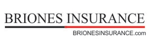 Briones Bookkeeping Insurance Agency  Inc