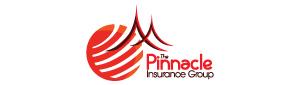 The Pinnacle Insurance Group