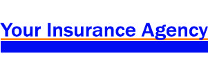 Your Insurance Agency