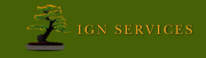 ING Services